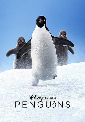 Penguins پنگوئن ها