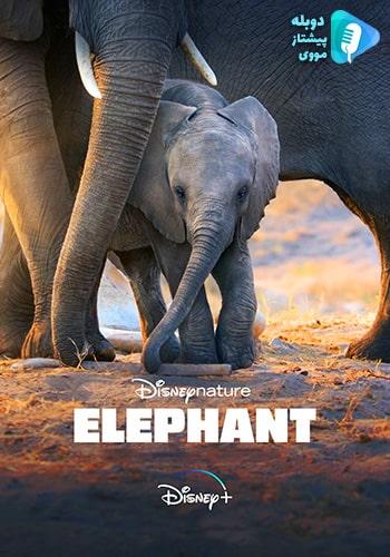 Elephant فیل